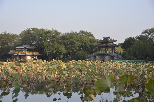 NOT AVAILABLE:china_20141024_165325.JPG